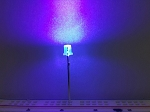 3mm FLAT TOP PURPLE UV LED Clear TEN Pack With Resistors for 12v