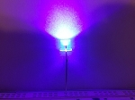 5mm FLAT TOP LED PURPLE UV TEN Pack With Resistors for 12v